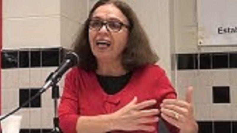 نقش زنان در تحولات پس از دیماه در ایران، سخنرانی فریبا ثابت در واشنگتن