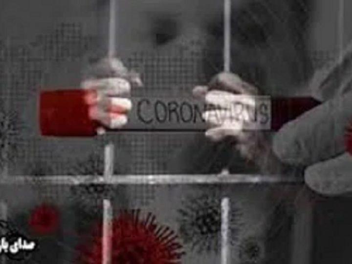 مرسده قائدی :جان زندانیان سیاسی در خطر است ،آنان را دریابیم